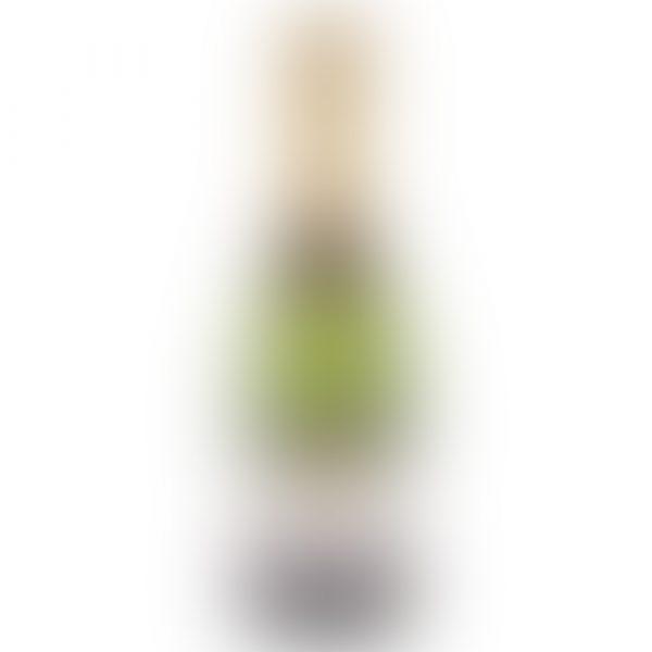 Sainsbury's Sparkling Wine-1