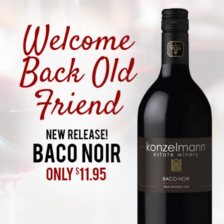 Baco Noir is Back