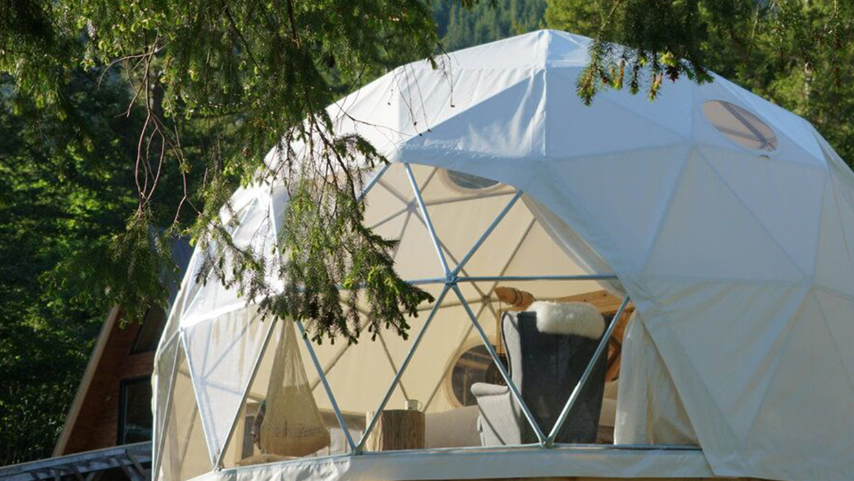 New Vineyard Dome